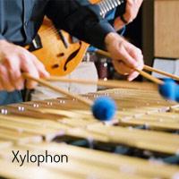 Xyophon